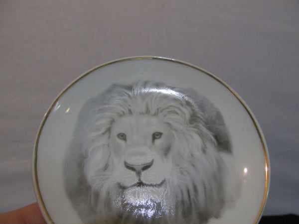 small LION plate, with plate stand, Big Cats, Gold Rimmed, Home Decor, Lions, King of the Jungle, epsteam, porcelain, Meow, FREE SHIPPING