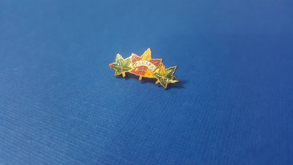Antique Small CANADA Pin, brooch, souvenir, early 1900s, vintage jewelry, Free Shipping