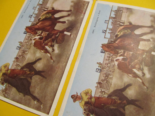 Bull dogging a Steer, Cowboy Rodeo, Horses, Horseback Riding, Stewart Brothers, Postcard, FREE SHIPPING