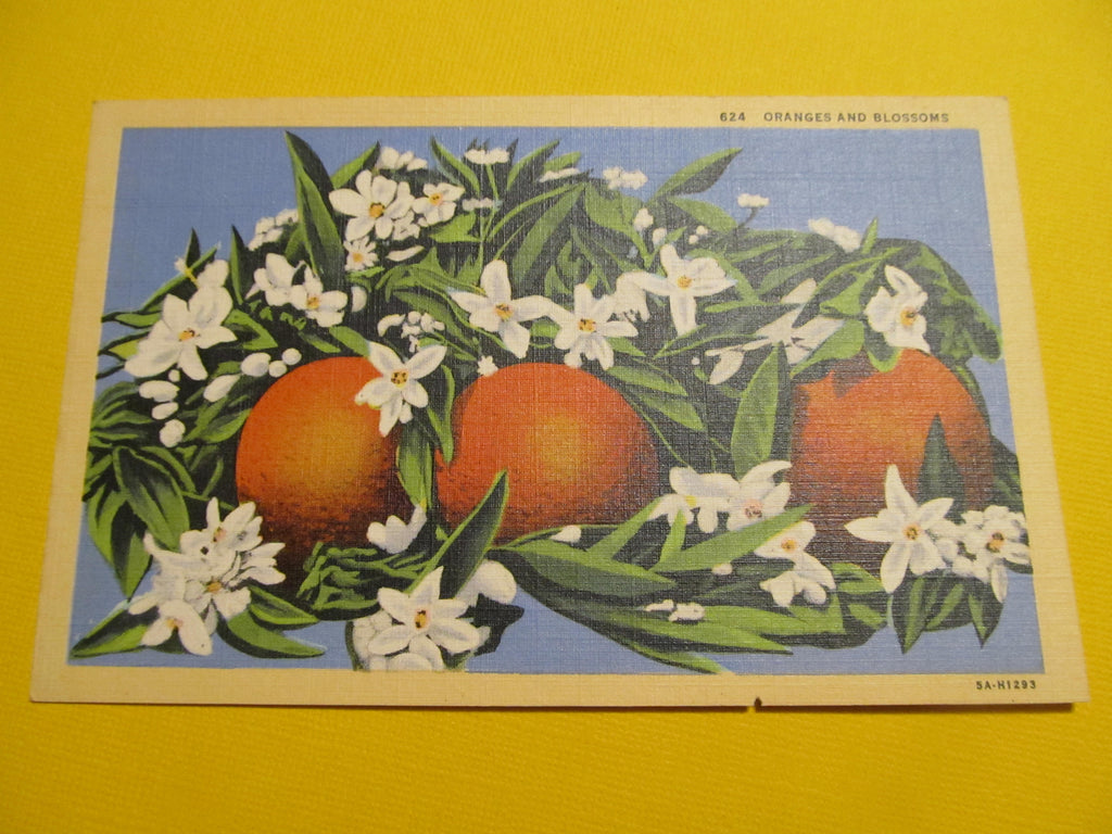 Oranges, from California, western publishing & novelty co, Fruit Postcard, FREE SHIPPING