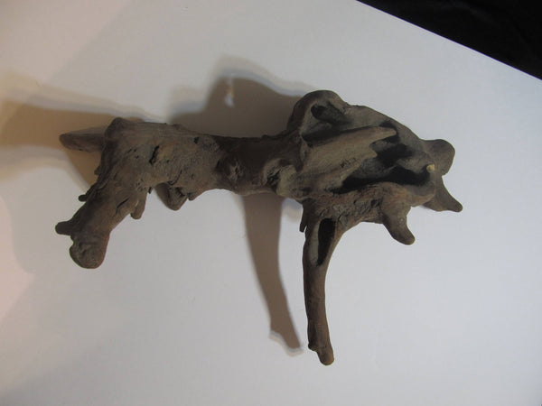 Driftwood Dragon, Odd Shaped Driftwood, Raw Materials, Water Findings, Taxidermy Mounts, Monster, Wood, Petrified Wood, Root, Tree