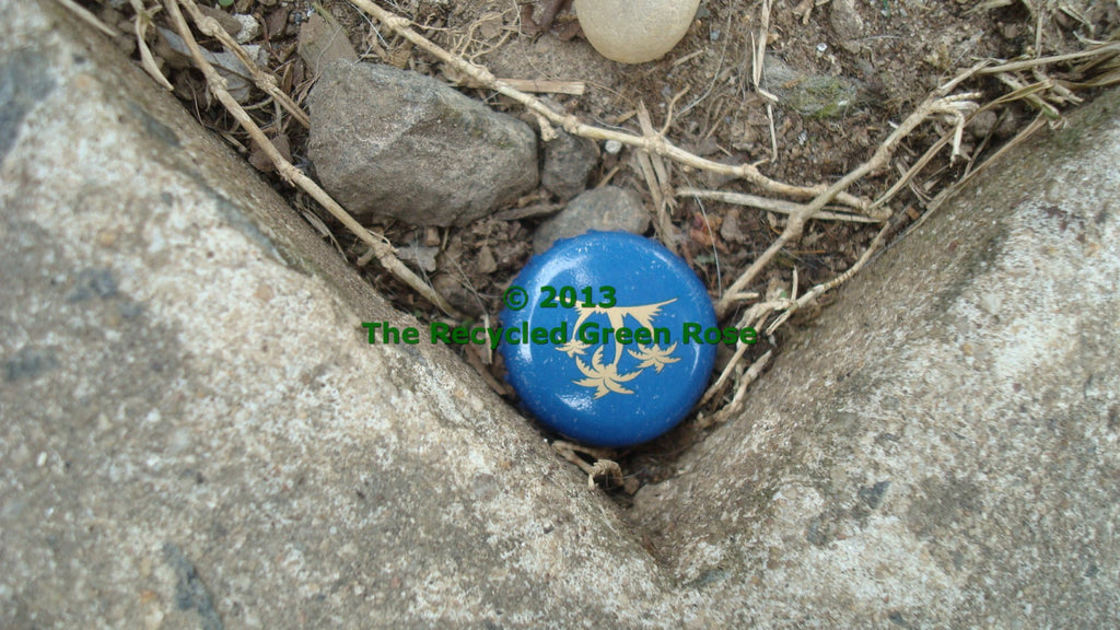 Bottle Top Micro Geocache - Sneaky Evil Hide