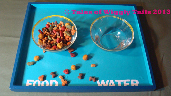 Dog or Cat Food Tray Mat Container Box - Do you have a messy eater...