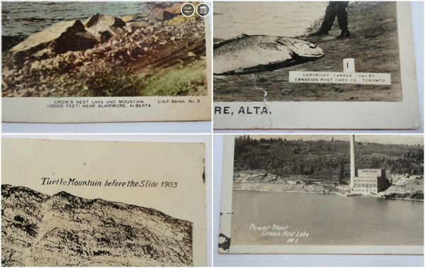 Lot of Four CANADA Postcards, Alberta, Landscapes Novelty, FREE SHIPPING