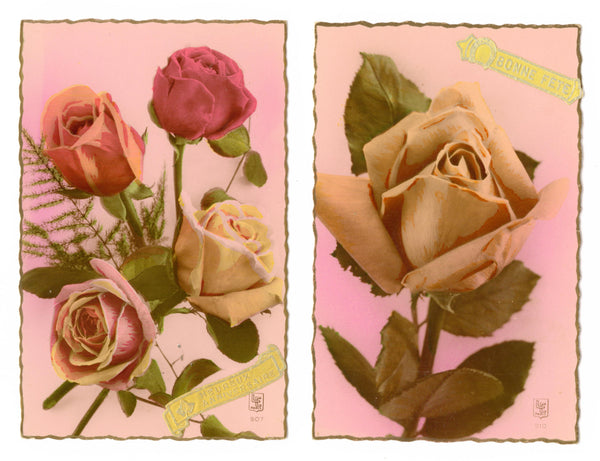 two Gorgeous Rose Postcards, Paris, France, FREE SHIPPING