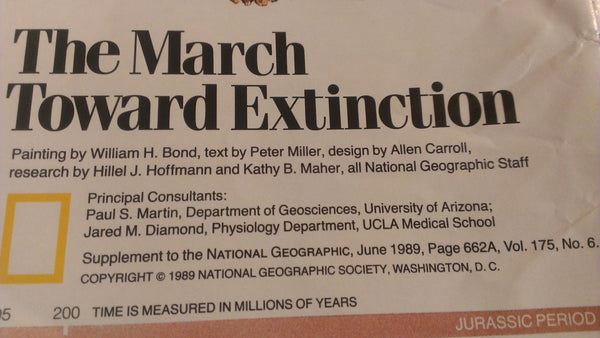 The March Toward Extinction, National Geographic Map, June 1990, FREE SHIPPING