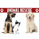 Animal Rescue by Blaze Vapor Logo