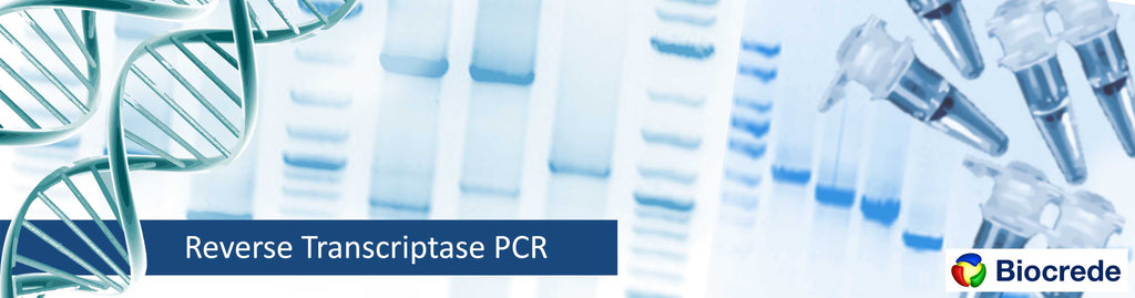 Biocrede RT-PCR