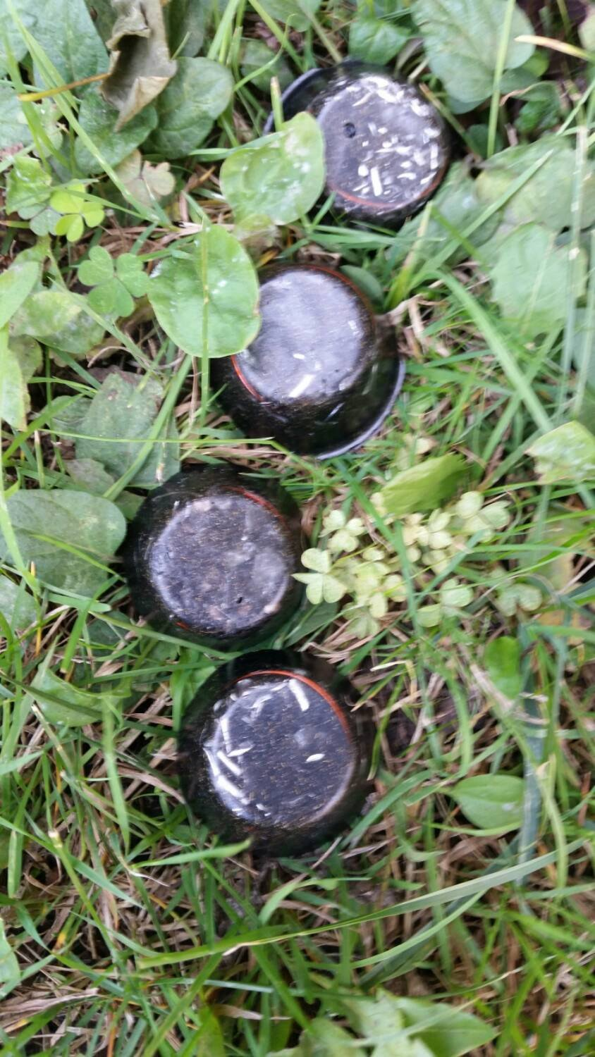 "Fingerprint Orgonite© Set of 4 Tactical Orgone Pucks ""Dirty Harry's"" (Indoor & Outdoor Use)/Ogone Towerbusters/Vegetable Garden"