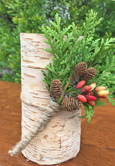 Small pine cones for candle decorations