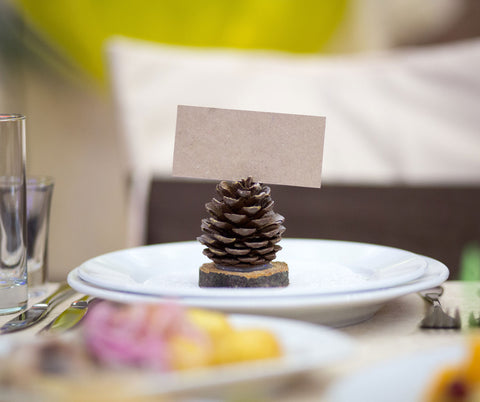 pine cone wedding place card holders