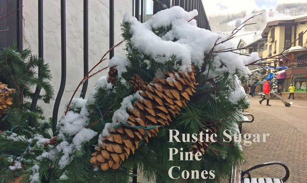 pine cone decorations at vail