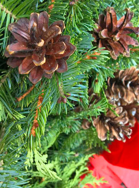 Holiday Wreaths for the Holidays