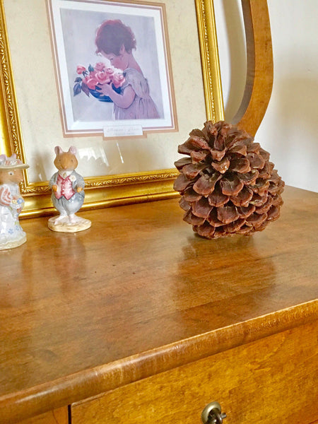 Large Pine Cones for rustic accents in home decor
