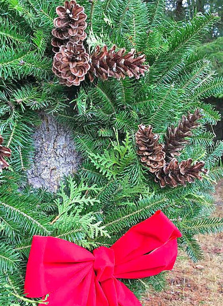 Holiday Wreaths handmade with pine cones