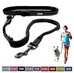 pawtitas running dog leash