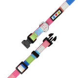 Pet / Puppy Soft Training Adjustable Multicolor Dog Collar up view