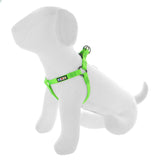 BASIC PAWTITAS DOG HARNESS GREEN