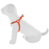 BASIC PAWTITAS DOG HARNESS ORANGE SIDE