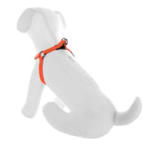 BASIC PAWTITAS DOG HARNESS ORANGE BEHIND