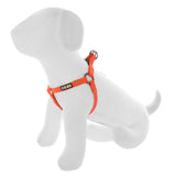 BASIC PAWTITAS DOG HARNESS ORANGE FRONT