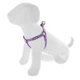 BASIC PAWTITAS DOG HARNESS ORCHID