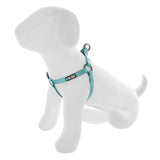 BASIC PAWTITAS DOG HARNESS TEAL