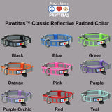 Reflective Padded Dog Collar Classic by Pawtitas all colors