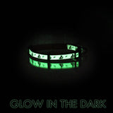 Glow In The Dark Cat Collar with Safety Buckle and Bell demonstration