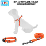 BASIC PAWTITAS DOG HARNESS COLLAR LEASH SET