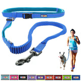 Reflective Padded Anti-shock Outdoor Training Running Dog Leash blue