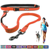 Reflective Padded Anti-shock Outdoor Training Running Dog Leash orange