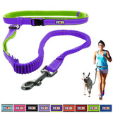 Reflective Padded Anti-shock Outdoor Training Running Dog Leash purple