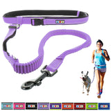 Reflective Padded Anti-shock Outdoor Training Running Dog Leash orchid
