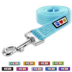 Pawtitas Reflective Dog Leash 4 feet teal