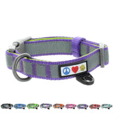 Reflective Padded Dog Collar Classic by Pawtitas purple