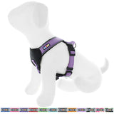 Pet Training Soft Adjustable Reflective Padded Puppy / Dog Harness orchid