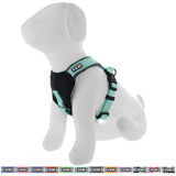 Pet Training Soft Adjustable Reflective Padded Puppy / Dog Harness teal