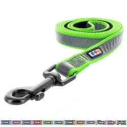 Reflective Dog Leash Padded Puppy / Dog Leash 6-foot by Pawtitas green