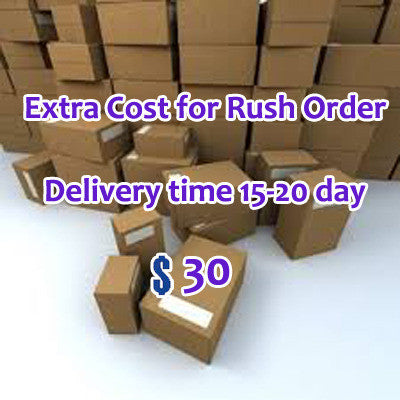 Extra Cost of Rush Order, Get goods within 15-20 days - dream dress