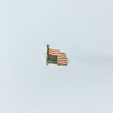 Blind Patriotism Lapel Pin