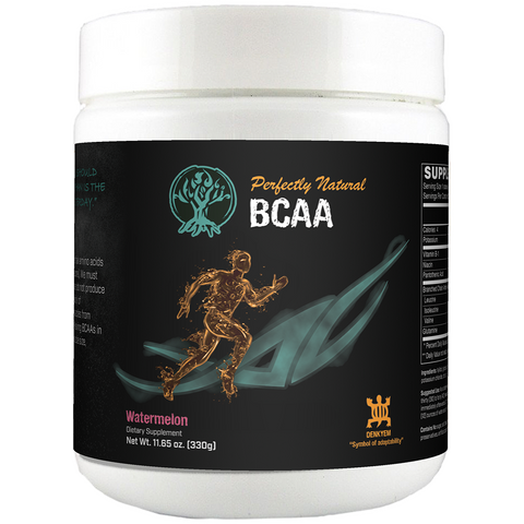 PNN Performance BCAA