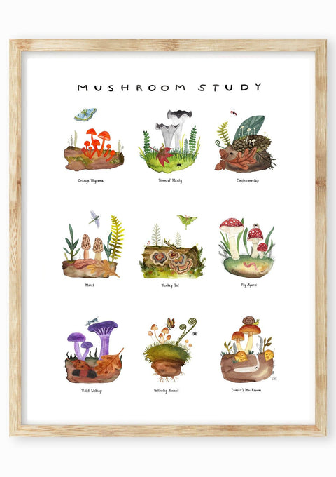 Mushroom Study Art Print Art Prints Little Truths Studio