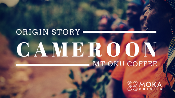 Cameroon blog lead image.