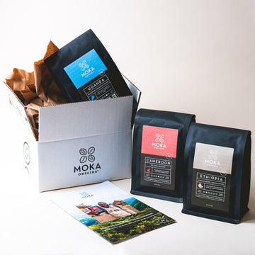 African Origins Coffee Bundle Bundle Moka Origins