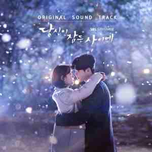 SBS DRAMA - WHILE YOU WERE SLEEPING O.S.T 2CD