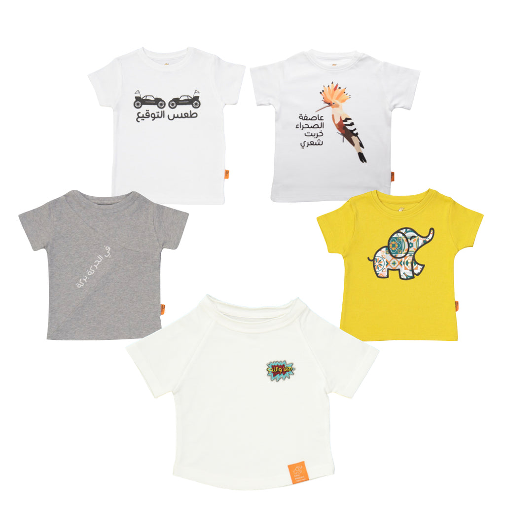 Tees Set for Boys (5 pieces)