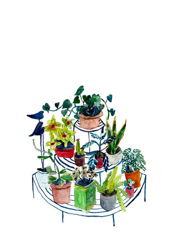 CIRCULAR PLANT STAND