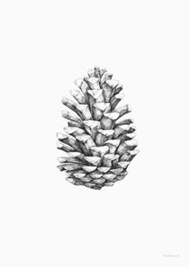 Inky Lines Pine Cone Print - BTS CONCEPT STORE