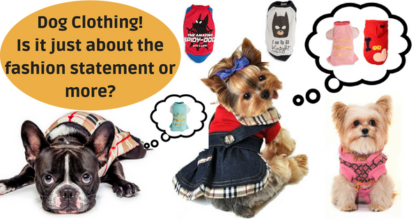 Dog clothing! Fashion statement or more?